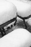 ny snow Fotografering för Bildbyråer
