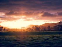 ny solnedgång zealand Arkivbilder
