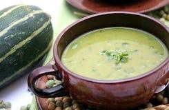 ny soup Arkivbilder