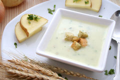 ny soup Arkivfoto