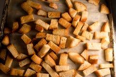 Ny stekt bakad traditionell mellanmålsmällare för frasiga frasiga guld- krutonger från vitt bröd royaltyfri foto