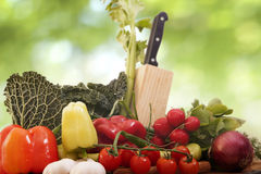 Ny strikt vegetarianmat fotografering för bildbyråer