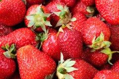 ny sund naturlig jordgubbe för closeupmat Arkivfoton