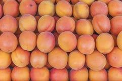 Ny sund persika på bondejordbruksmarknad på slut för solig dag för morgon Royaltyfri Foto