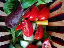 Ny sund sallad i portiongafflar arkivbilder