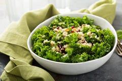 Ny sund sallad med grönkål och quinoaen Arkivbilder
