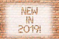 Ny textteckenuppvisning i 2019 Kommande årsupplösning för begreppsmässigt foto som annonserar konst för vägg för ny produktspecif royaltyfri bild