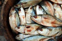 Ny thai makrill i trähink på fiskmarknaden, sydlig Th Arkivbilder