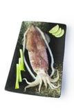 Ny tioarmad bläckfisk med löken och citronen på den svarta plattan på den vita backgroen Arkivbild