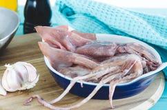 Ny tioarmad bläckfisk som är klar att lagas mat Royaltyfria Bilder