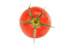ny tomat Royaltyfria Bilder
