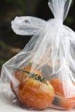 Ny tomat Fotografering för Bildbyråer