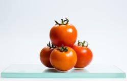 ny tomat Royaltyfri Foto