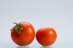 ny tomat Arkivfoton