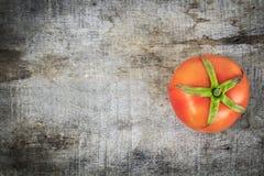 Ny tomat på gammalt trä Royaltyfria Bilder