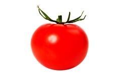 Ny tomat på vit bakgrund Arkivbild