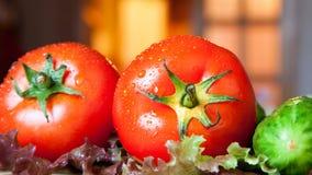 Ny tomater, gurkor och grönsallat Arkivbild