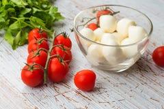 Ny tomater och mozzarellaost royaltyfria bilder