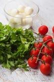 Ny tomater och mozzarellaost royaltyfri bild