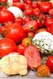 Ny tomater, vitlök, lökar och timjan i stekhet panna Royaltyfri Bild