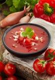 Ny tomatsoppa Gazpacho arkivbild