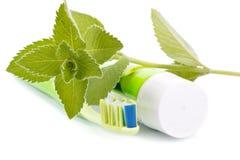 ny toothpaste för leavesminttandborste royaltyfri bild