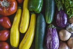 ny trädgård min grönsaker royaltyfri fotografi