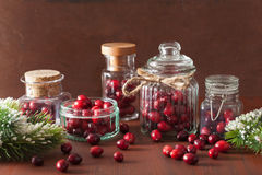 Ny tranbär i exponeringsglaskrus, vintergarnering Arkivfoto