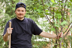 ny tree för trädgårdsmästare Royaltyfri Fotografi