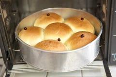 ny ugn för bröd Arkivfoton