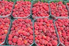 Ny-valda frukthallon i en korg av halvan per kg Arkivbilder