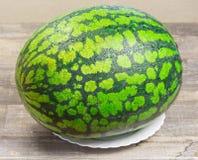 Ny vattenmelon, träbakgrund, mogen randig melon på tabellen, närbild av den nya röda vattenmelon på den vita plattan som är söt Royaltyfria Foton