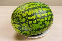 Ny vattenmelon, tygbakgrund, mogen randig melon på en vit tabell, närbild av rött ligga för ny vattenmelon på a Royaltyfri Fotografi