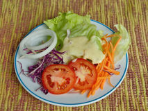 Ny vegatable sallad på plattan. Royaltyfria Foton