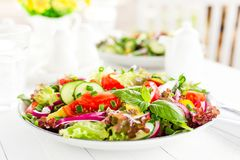 Ny vegetarisk grönsaksallad med tomaten, löken, gurkan, peppar, basilika och grönsallat plate sallad Royaltyfri Bild