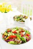 Ny vegetarisk grönsaksallad med tomaten, löken, gurkan, peppar, basilika och grönsallat plate sallad Fotografering för Bildbyråer
