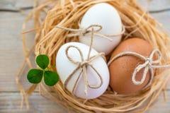 Ny vit och bruna ägg. Fotografering för Bildbyråer