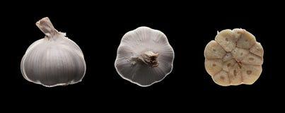 Ny vitlök på svart Fotografering för Bildbyråer