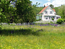 ny white för klassiskt england hus Arkivbild