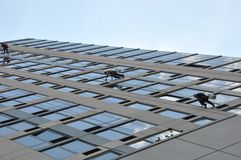 NY Window Washers. Window Washers in New York over the High line park Royalty Free Stock Photos