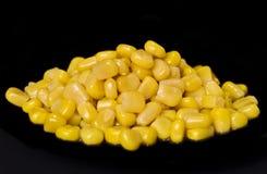 ny yellow för havre Fotografering för Bildbyråer