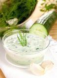 ny yoghurt för gurka Fotografering för Bildbyråer