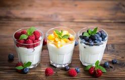 Ny yoghurt för sund frukost med bärfrukter royaltyfri bild