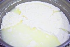 Ny yoghurt i exponeringsglasbunke arkivbild