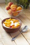 Ny yoghurt med aprikors Royaltyfria Bilder