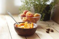 Ny yoghurt med aprikors Arkivfoto