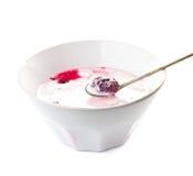 Ny yoghurt med björnbäret i en vit bunke som isoleras Royaltyfria Foton