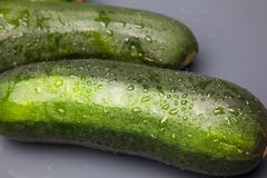 Ny zucchini p? vit bakgrund arkivfoton