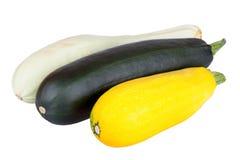 Ny zucchinizucchini som isoleras på vit Royaltyfria Foton