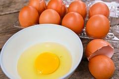 Nya ägg Arkivfoto
